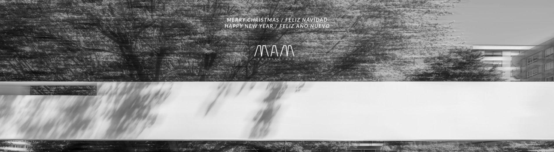 Merry Christmas and happy new year / Feliz navidad y próspero año nuevo